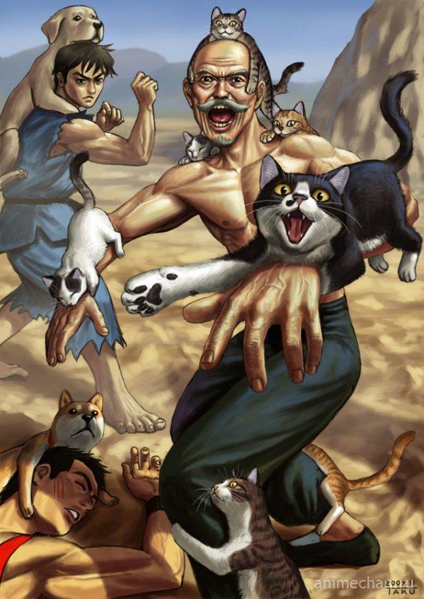 Кошки, в атаку!