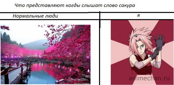 Сакура