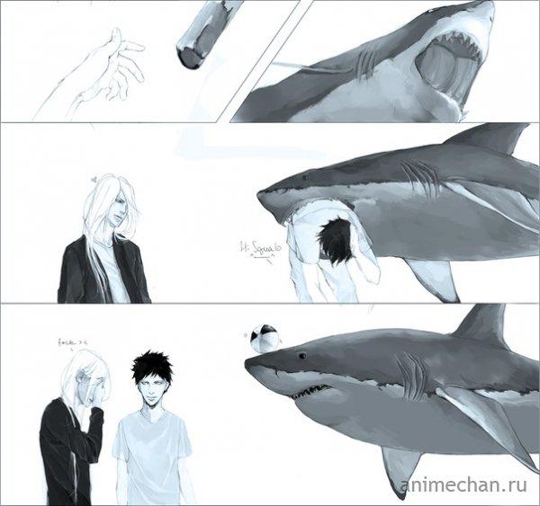 Умная акула