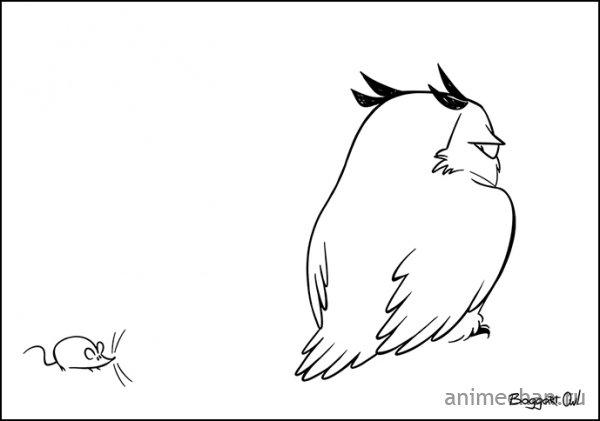 Неправильная сова