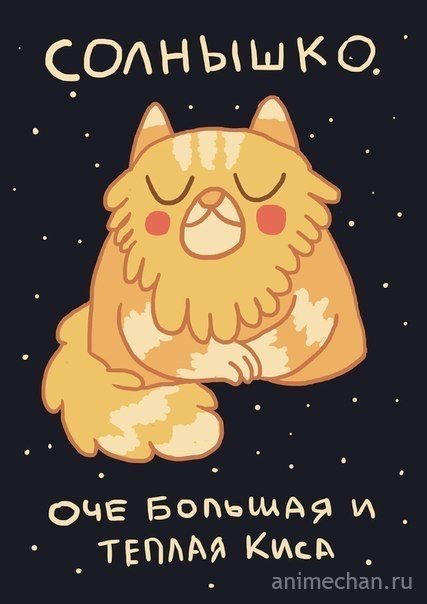 Котики - планеты