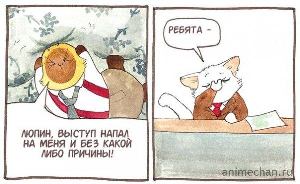 Котейкины новости