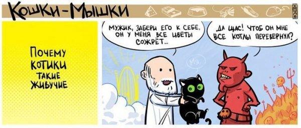 Проблемы богов