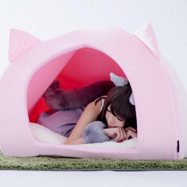 Human Pet House