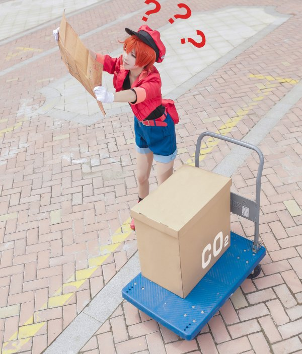 Red Blood Cell Cosplay