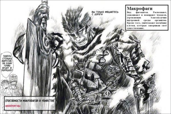 Макрофаг