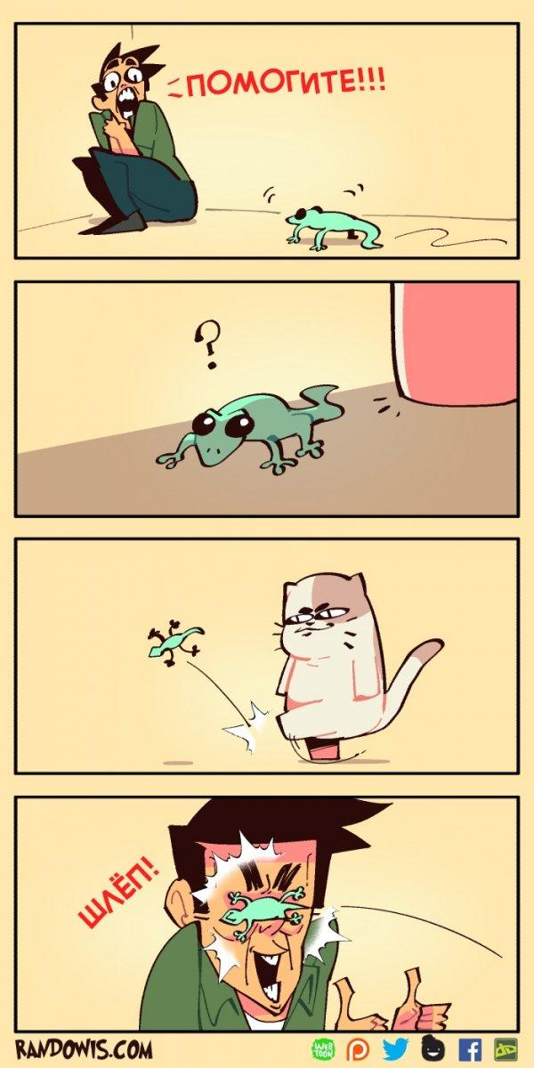 Полезный Котя