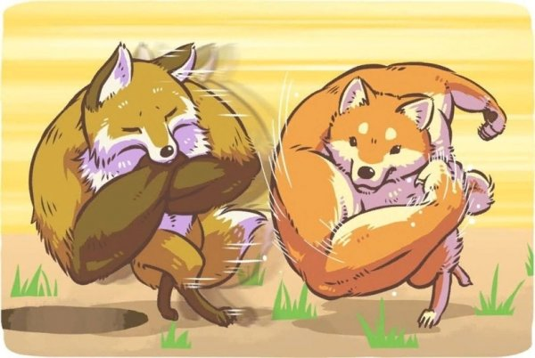Jojo fox