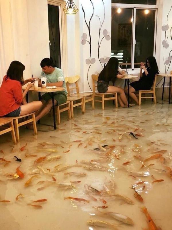А не хотите ли в кафе с рыбками?