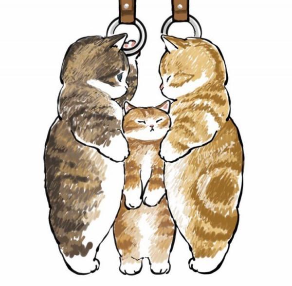 Жизнь няшных котяток