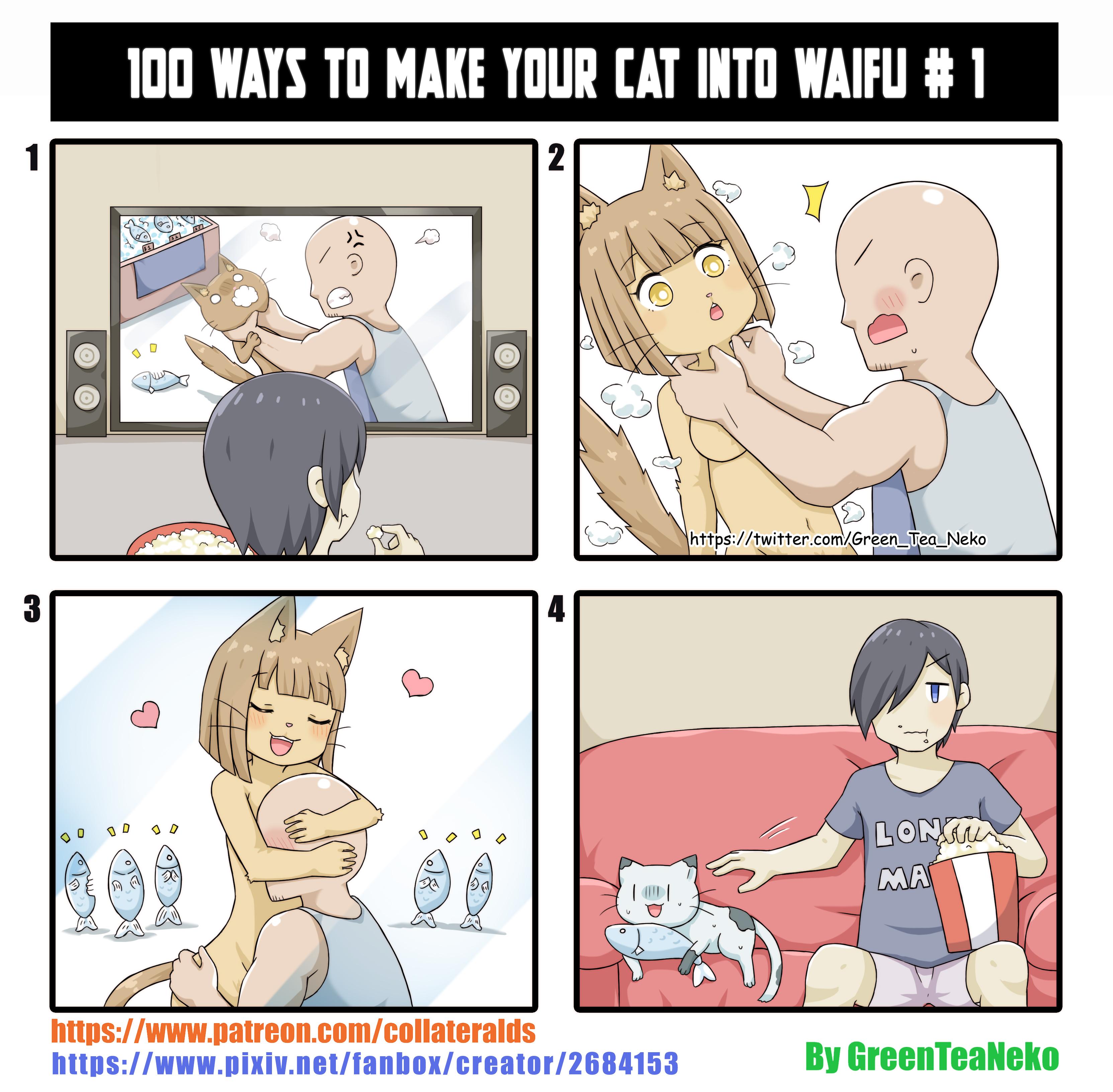 100 способов как превратить вашу кошку в вайфу. Способ 1
