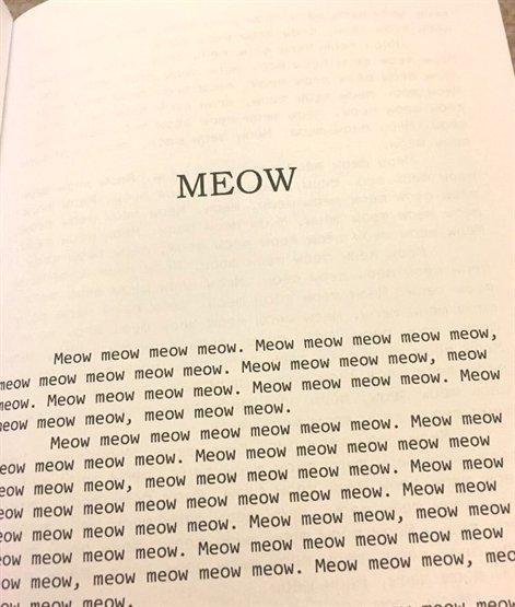 Кошачья литература