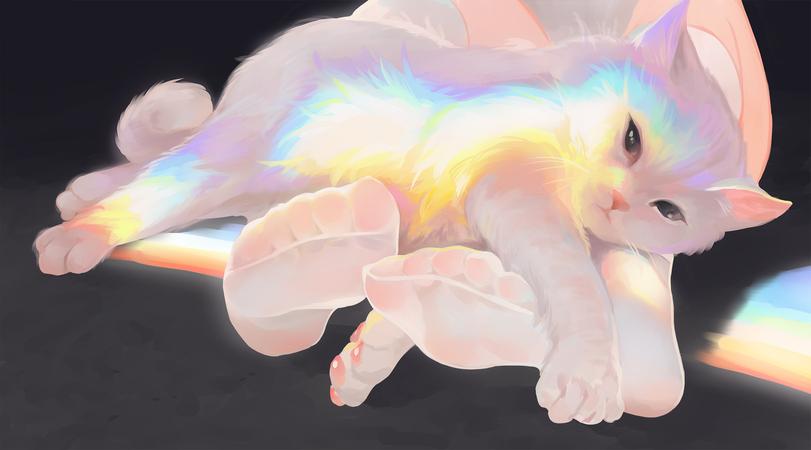 Котик семьи Кирюин v2.0