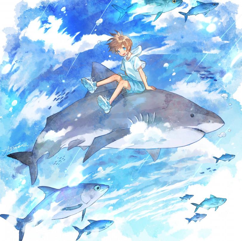 Покатаемся на акуле