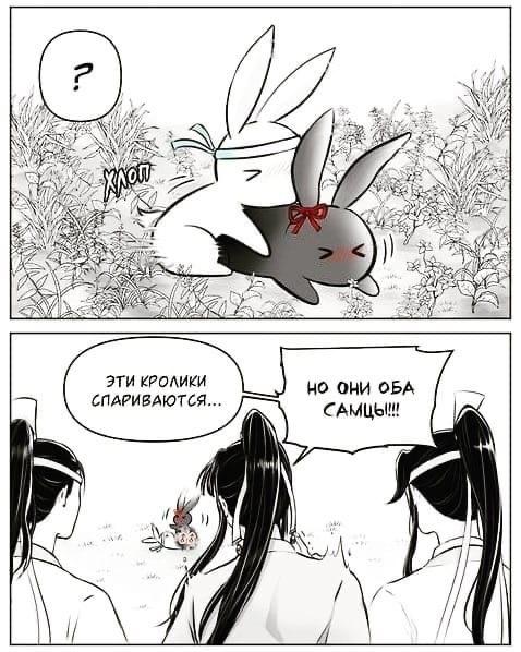 Какая манхва, такие кролики