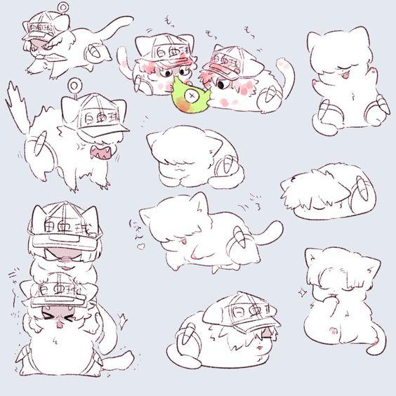 Котоклетки