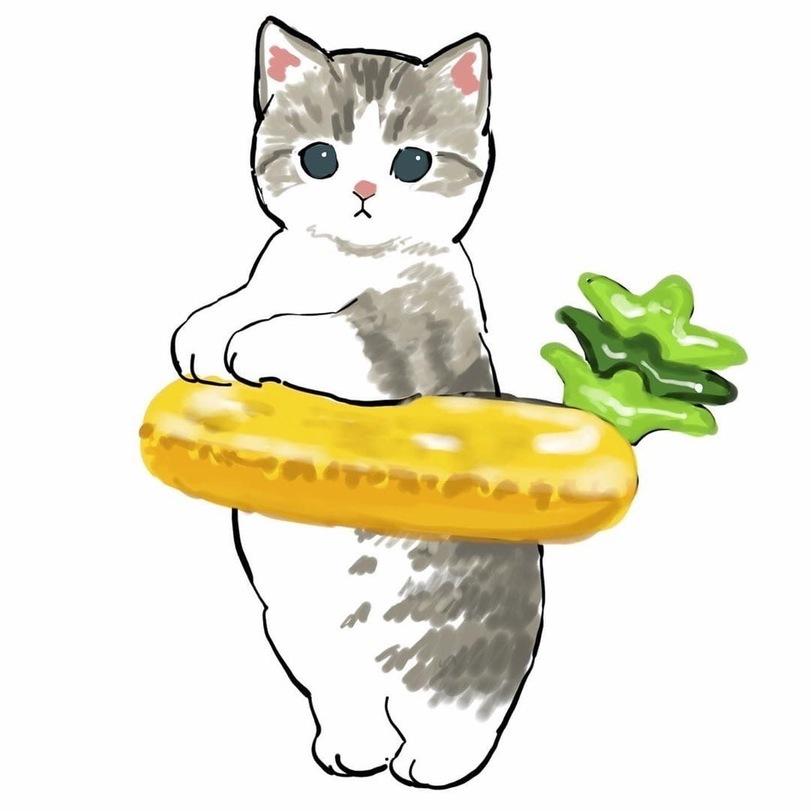 Котокруги