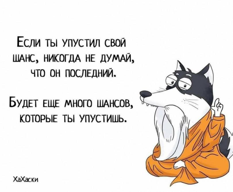 Мудрый совет, не парься