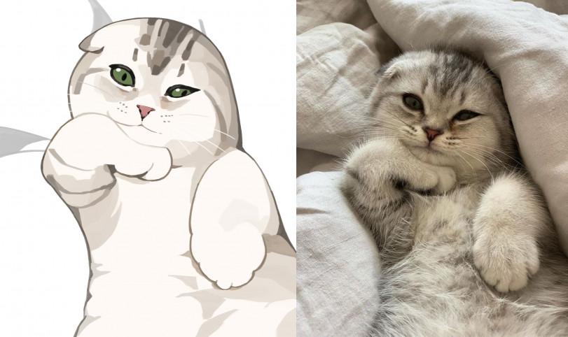 Коты выходного дня