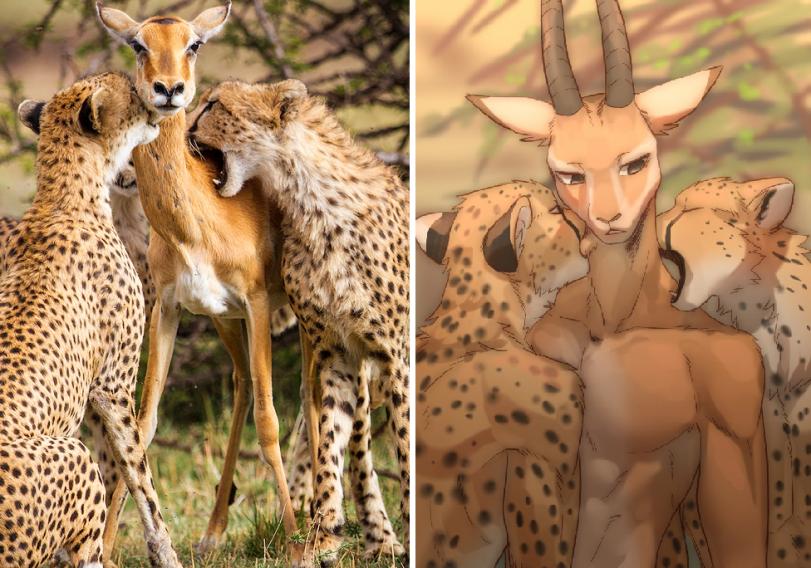 Гепарды и газель