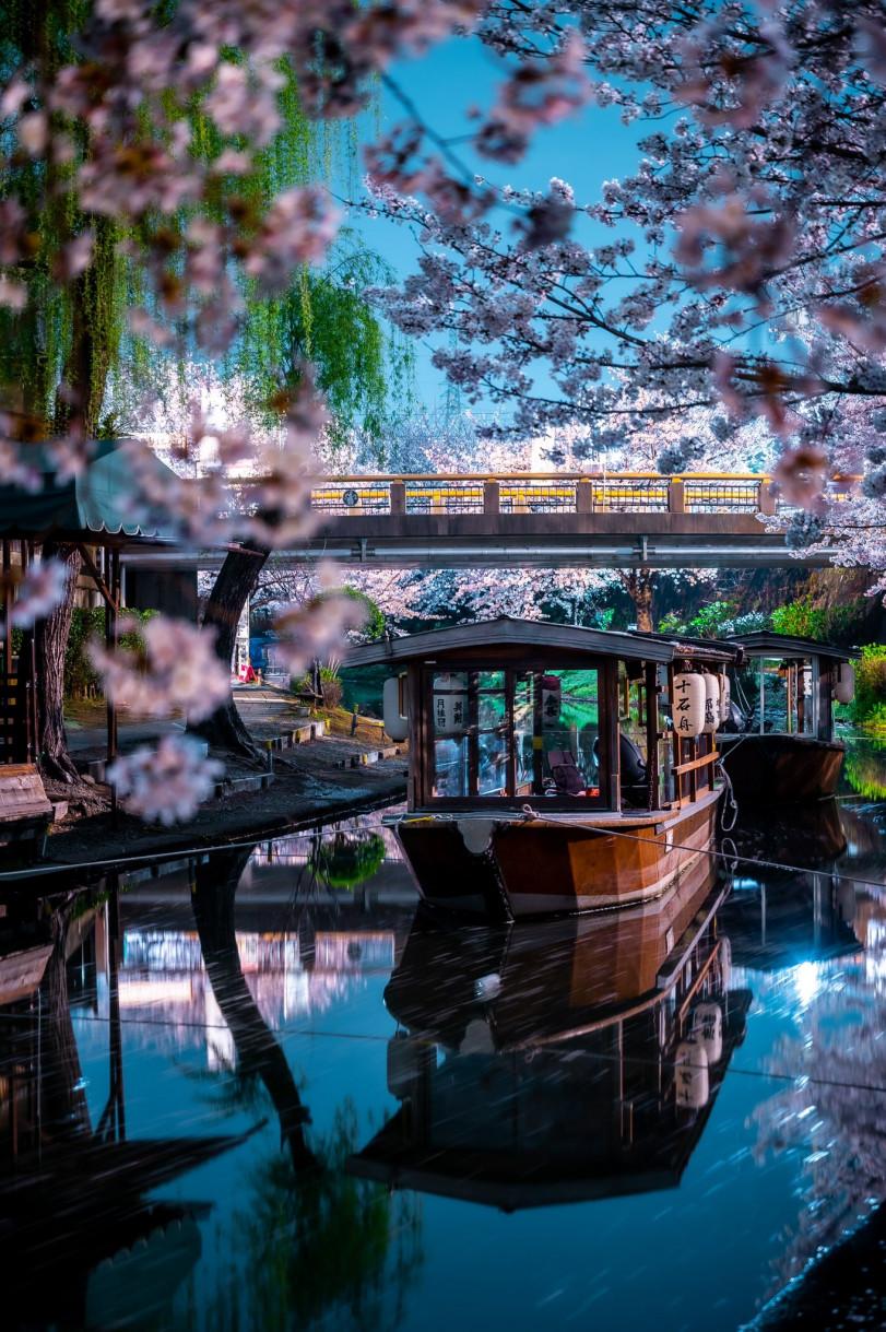 Префектура Киото, Фусими