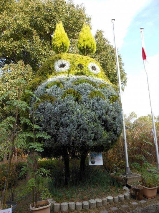 Зеленый сосед Тоторо