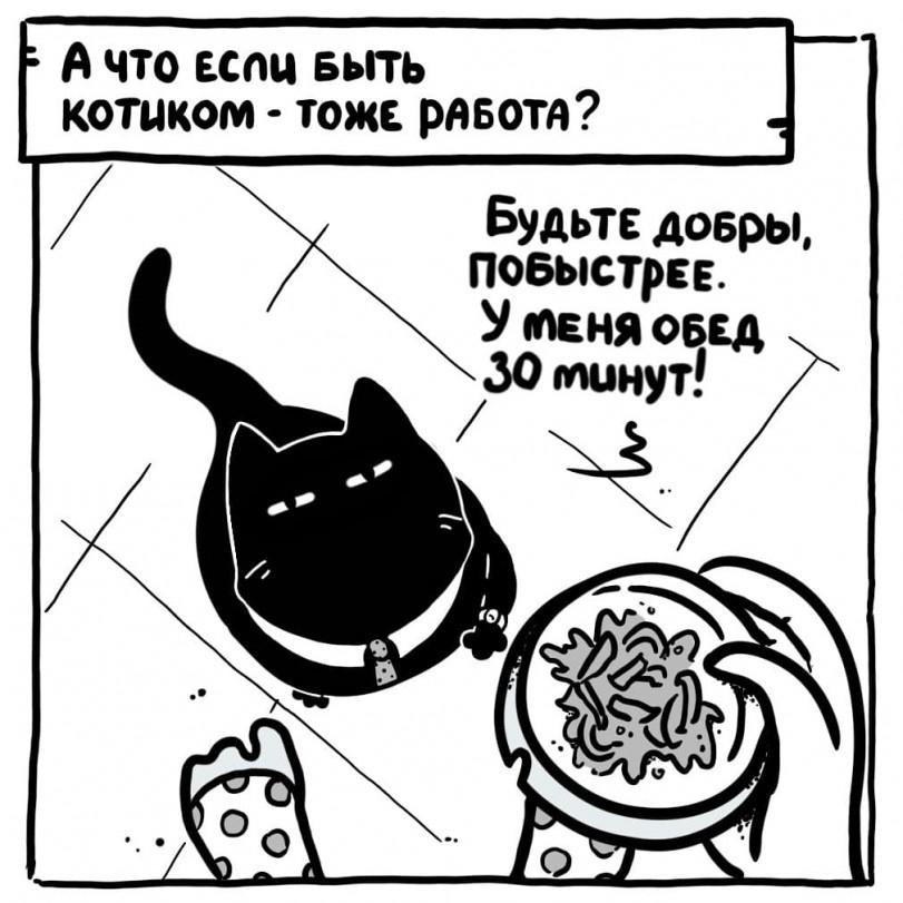 Работа котиком