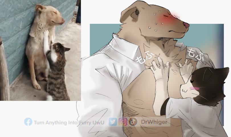 Пес-кун и кошка-тян