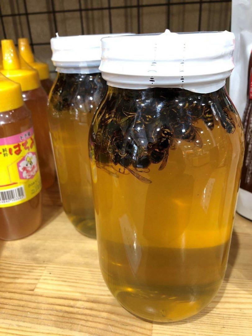 Гигантский шершень в меду — необычный десерт из Японии.