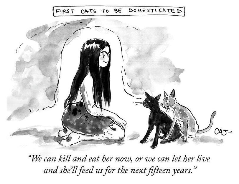 Первые кошки, которые были приручены...